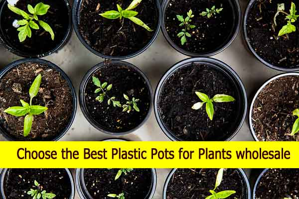 plastic pots for plants wholesale
